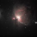 Orion Nebula,                                Paul Cimino