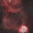 Rosette, Cone nebula and Christmas Tree,                                Guillaume-Arnaud