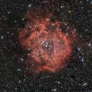 Rosette Nebula,                                John Bozeman