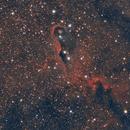 IC 1396,                                Alessandro Curci