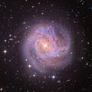 M83 - The Southern Pinwheel Galaxy,                                Jason Wiscovitch