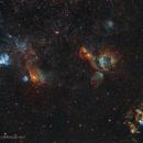 Magellanic Trio,                                Diego Colonnello