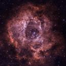 Rosette Nebula NGC2244 (Caldwell 49) Reprocessed,                                Jeff Clayton