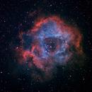 NGC2244 Rosetta Nebula,                                Ilyoung, Seo