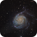 M101 - 14 frames & then 40 frames + Halfa!,                                Luigi Fontana