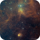 Spider (IC 417) and Fly (NGC 1931) Bicolor,                                Eric Coles (coles44)