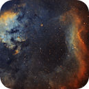 The NGC 7822 Complex,                                pmneo
