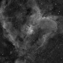 IC 1805 Heart Nebula in Ha,                                J. Norris