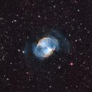 M27 - Dumbbell Nebula,                                Dan Gallo