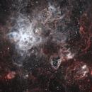 A Tangled Web - NGC 2070,                                Jeff Coldrey