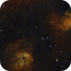 IC410 and Flaming Star SHO palette,                                Janos Barabas
