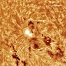 AR1278,                                Gabriel - Uranus7