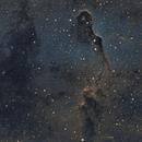 IC1396 Elephant Trunk Nebula,                                ewa