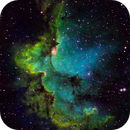 The Wizard Nebula, NGC 7380,                                DustSpeakers