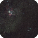 Carina Nebula 135mm,                                Cluster One Observatory