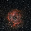 Nebulosa rosetta NGC2237,                                Alessandro Speranza