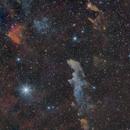 Fantacy's Maze ( IC 2118 ),                                Reza Hakimi