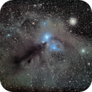 Nebulosity in Corona Australis (NGC's 6729, 6726-7, IC4812 etc) and Globular 6723 in LRGB,                                robonrome