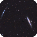 NGC4631 and NGC4656 - Whale and Hockey Stick Galaxies in Canes Venatici,                                Stellario