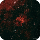 RCW 89—the Mystery Nebula,                                Russ Carpenter