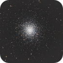 M13,                                Poochpa
