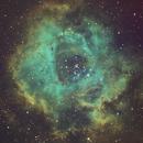 NGC2237 HST,                                Hideki