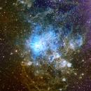 Tarantula Nebula NGC2072,                                Alastairmk