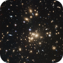 ABELL 1689 - Galaxy Cluster,                                Steven Marx