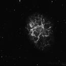 The Crab Nebula,                                Paul