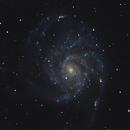 3. M 101 - NGC 5457 - Galaxie du Moulinet,                                Manuel Piton