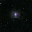 Iris Nebula,                                Jaysastrobin