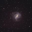 Southern Pinwheel Galaxy,                                Franky T