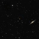 NGC 2683 and neighbours,                                Peter Spatz