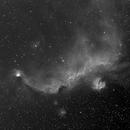 Seagull Nebula in Ha,                                Steven Christensen