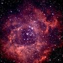 NGC 2244, Rosetta Nebula,                                Lawrence Longfellow