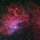 The Flaming Star Nebula,                                Shannon Calvert