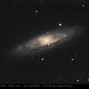 M 65 Galaxie du Lion,                                Jeffbax Velocicaptor