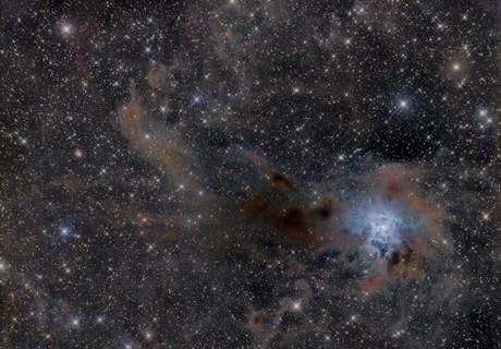 NGC 7023,                                Jan Róg