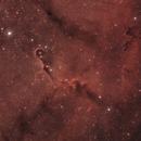 IC 1396 - Elephant's Trunk Nebula - July 2021,                                EdHoltAstro