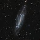 NGC 4236 in LRGB,                                Frank Zoltowski