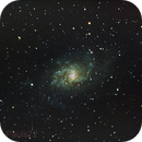 M33 - Triangulum Galaxy Shorter subs,                                Paul Surowiec