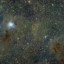 Iris nebula and surrounding dark clouds - RASA11 - QHY367c,                                dcnikon