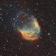 Sh2-274 (Medusa nebula),                                Zhaoqi Li