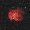 Monkey Head Nebula,                                Valerio Avitabile