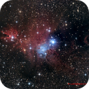 NGC2264 The Cone Nebula and the Christmas Tree Cluster,                                Luca Balestrieri Cosimelli