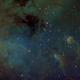 IC410 - Tadpoles,                                starlord