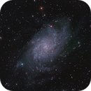 M33 only 9 x 600 sec. data,                                Roberto Coleschi