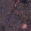 Rosette Nebula and Christmas Tree cluster,                                Ray Heinle