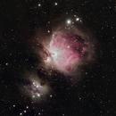 M42 - The Great Orion Nebula,                                Greg S