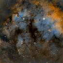 NGC 7822 in SHO,                                Seymore Stars
